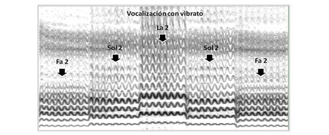 Vocalización con vibrato