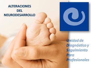 Unidad de diagnóstico intervención y seguimiento para profesionales
