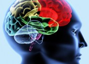 Neurofeedback y realidad virtual en daño cerebral