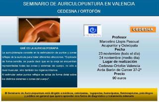 Seminario de Auriculopuntura en Valencia
